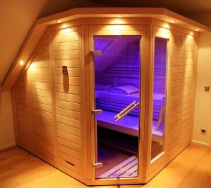 Sauna Glas Design Dachschräge Farblicht
